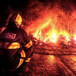 V noci horela skládka dreva v blízkosti skanzena! Kto je za požiar zodpovedný?