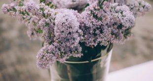 Ak vonku ešte prší a sneží, vďaka príjemnej atmosfére jari v interiéri, môžete byť stále svieži
