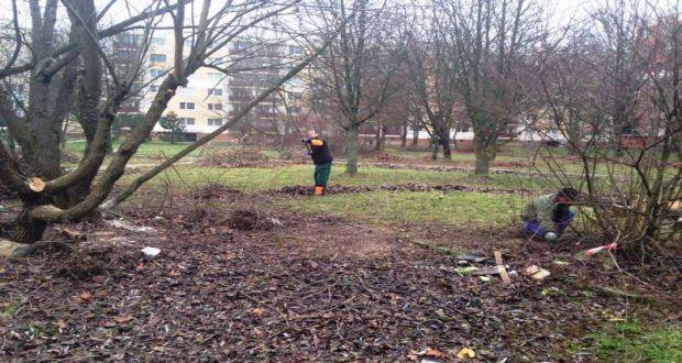 , Na Vlčinciach pribudne nová komunitná záhrada