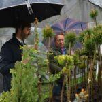 , Budatínsky park rozkvitol iv daždi