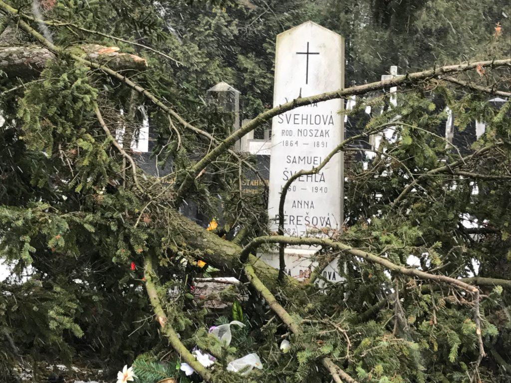 , Na Národnom cintoríne popadané stromy poškodili hroby národných dejateľov