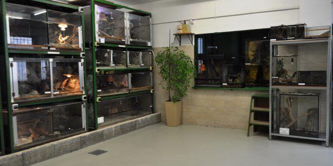 , Zrekonštruované priestory Žilinskej MiniZOO boli slávnostne otvorené