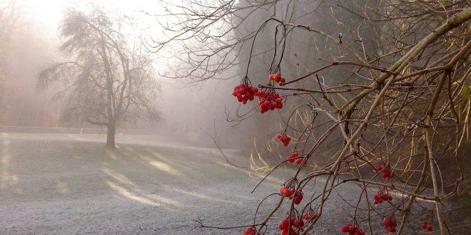 , Tohtoročná zima sa už predvádza. Kde bolo najmrazivejšie?