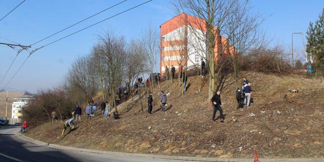 , ZA: Dobrovoľníci opäť čistili Hájik, bojujú tak proti diviakom