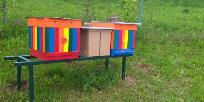 , Vyučovanie v dolnokubínskej škole bude vďaka novej včelnici atraktívnejšie